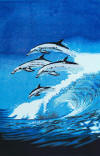 019 Dolphin towels 30x60