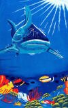025 Shark towel