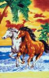 033  30x60 Horses