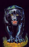 054 Panther