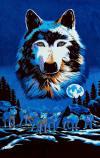 070 wolf