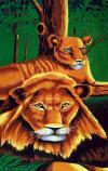 075 Lions