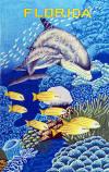 076 Dolphin